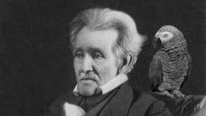 Andrew Jackson Parrot