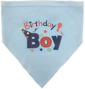 BINGPET Birthday Scarf