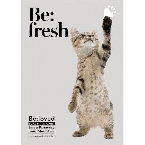 Be:loved Be:Fresh Cat Shampoo Bar Set
