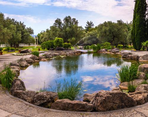 Belvoir garden pond ideas