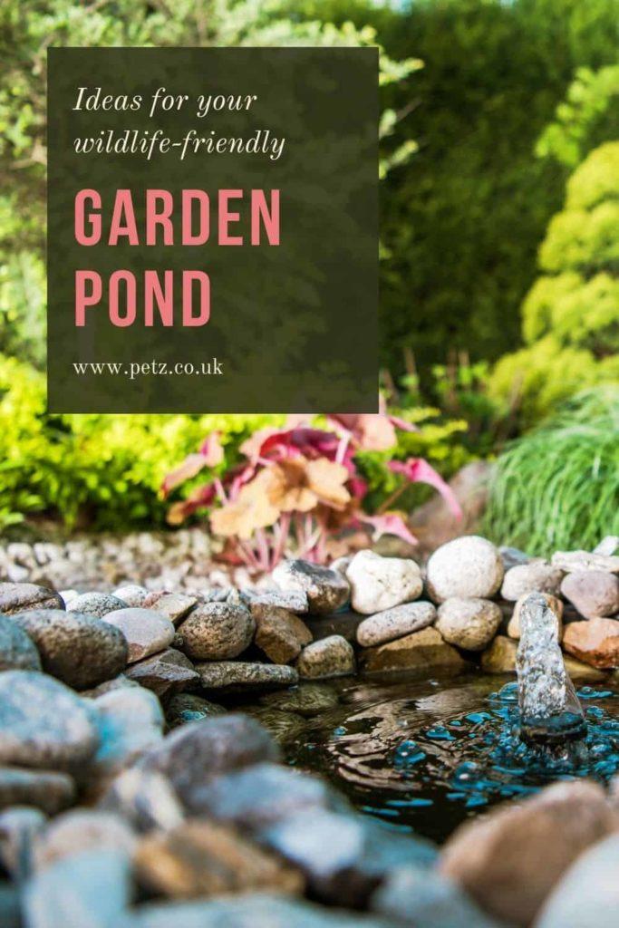 Best Garden Pond Ideas