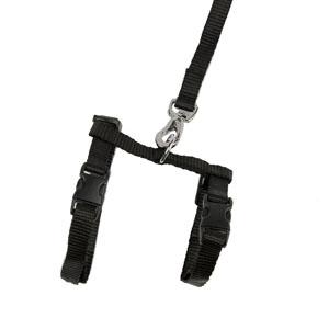 Black Stretchy Kitten Harness