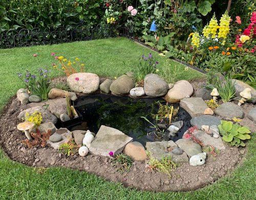 Building A Wildlife Pond