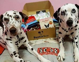 Buster Box