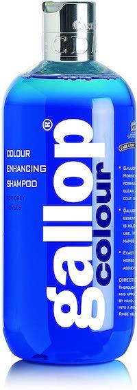 Carr & Day & Martin Gallop Colour Enhancing Shampoo