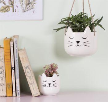 Cat Planter With A Succulent