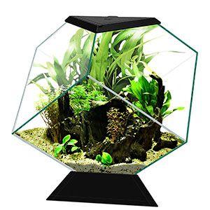 Ciano Nexus Diamond Aquarium