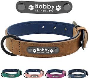 Didog Soft Leather Padded Custom Dog Collar