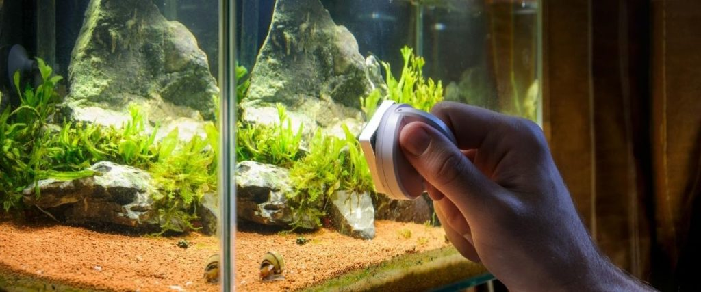 Fish Tank Cleaning Pad