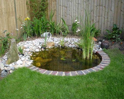Garden Pond Idea