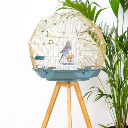 Geo Bird Cage