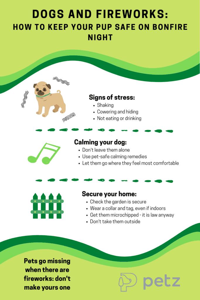 Keep Dogs Safe In Fireworks