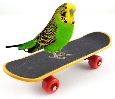 Keersi Intelligence Training Skateboard