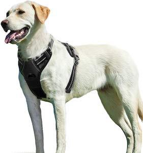 Eagloo No Pull Dog Harness