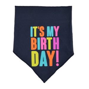 Party Dog Birthday Bandana