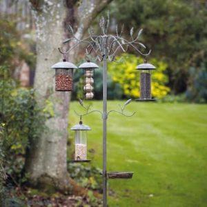 best bird feeding station