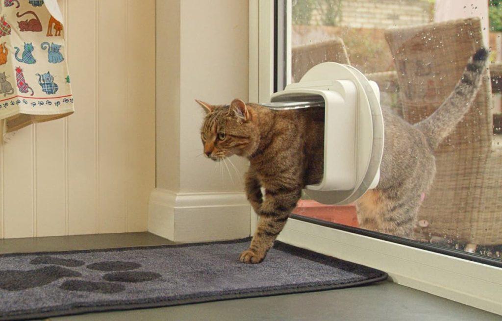 Pet Flaps UK Cat Flaps