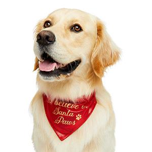 Pets at Home Christmas Santa Paws Dog Bandana