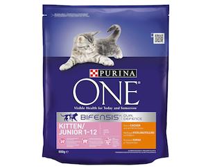 Purina ONE Kitten Dry Cat Food