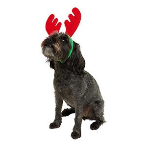 Christmas Reindeer Headband for Dogs