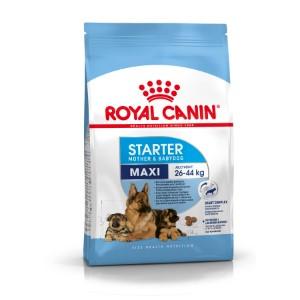 Royal Canin Maxi Starter Mother & Babydog Food