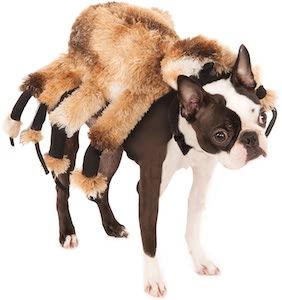 Giant Spider Pet Dog Costume
