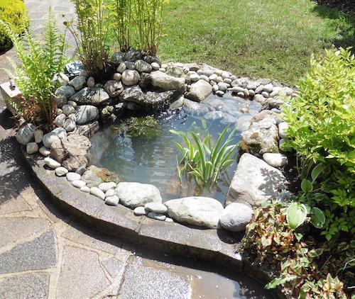 Small Pond Idea