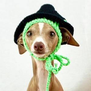 Spell Binding Pet Hat