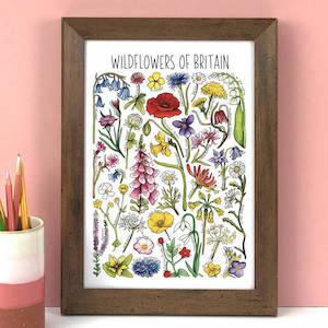 Wildflowers Of Britain Wildlife Watercolour Print