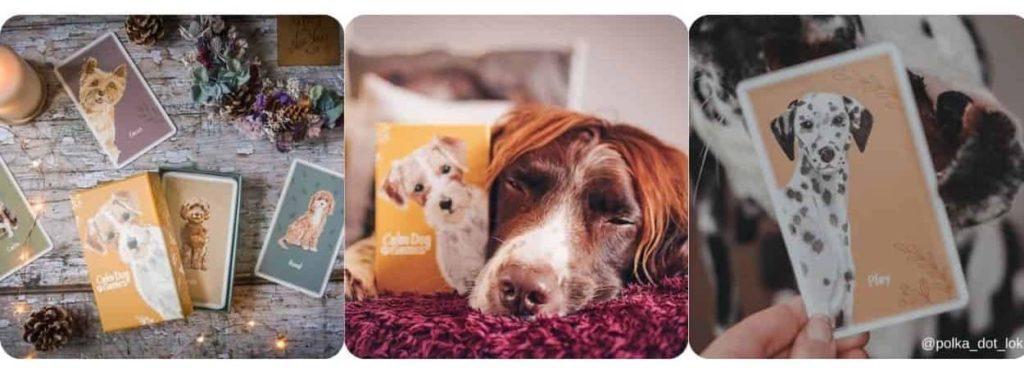 Calm Dog Games Vol 1 Multipack