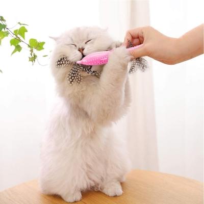 SEGMINISMART Cat Toothbrush Fish Toy