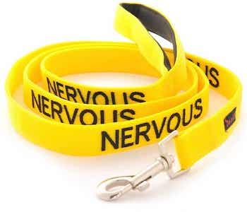 Dexil Nervous Dog Lead