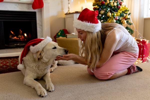 do dogs need christmas presents