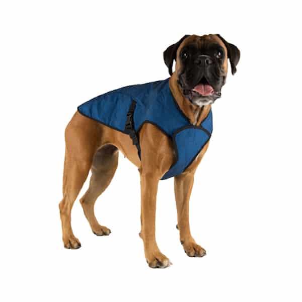 dog cooling jackets