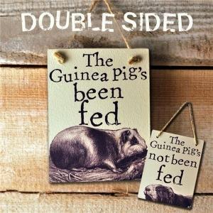 Reversible Guinea Pig Feeder Reminder