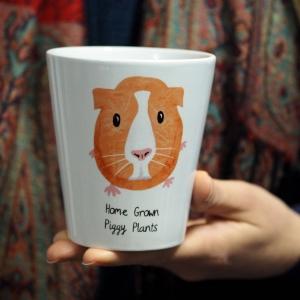 Guinea Pig Plant Pot
