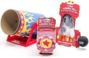 HAYPIGS Circus Guinea Pig Enrichment Toy Bundle