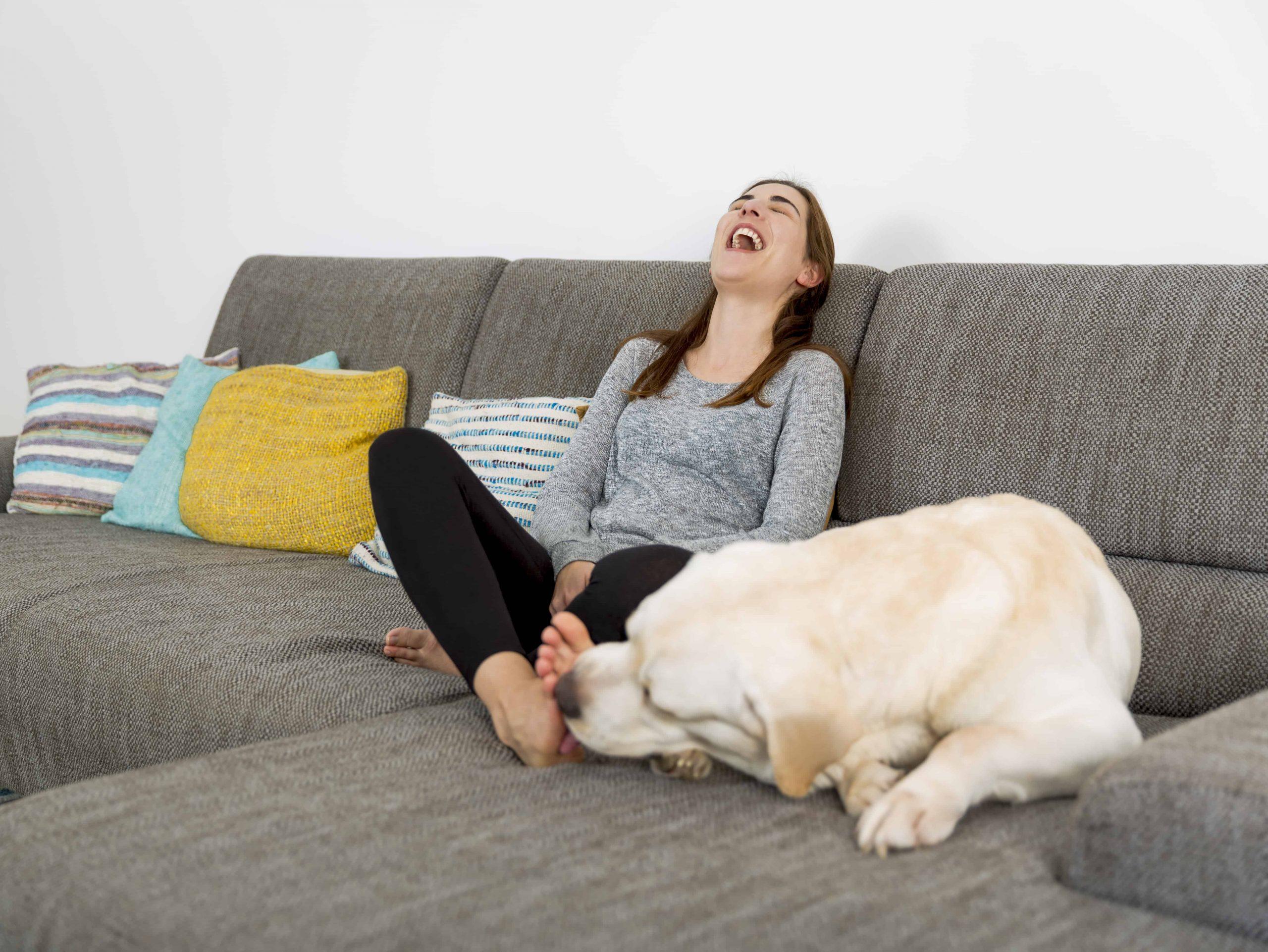 Dog licks owners feet