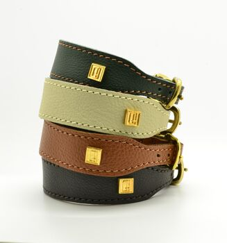 Dogs And Horses Luxury Greyhound Collar