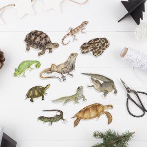 Reptile Animal Stickers