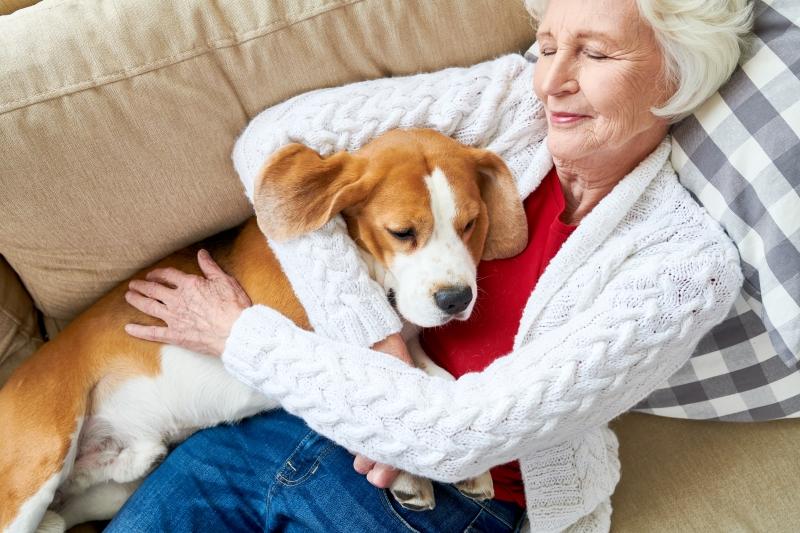 can i pet my dog if i have coronavirus