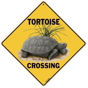 Tortoise Warning Sign