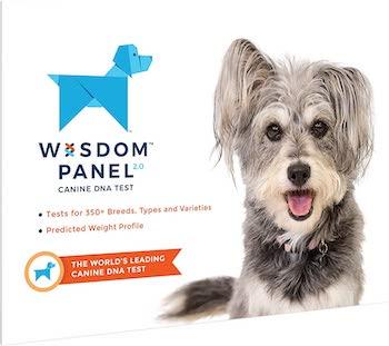 Wisdom Panel 2.0 Dog DNA Test